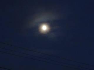 20120812_blog_20120729_Hokkaido_DSC02585_a.JPG