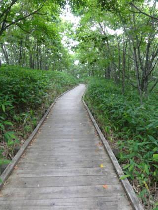 20120819_blog_20120730_Hokkaido_DSC02608_a.JPG