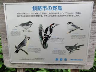 20120819_blog_20120730_Hokkaido_DSC02659_a.JPG