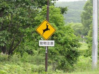 20120819_blog_20120730_Hokkaido_DSC02664_a.JPG