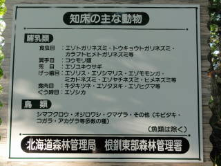 20120826_blog_20120731_Hokkaido_DSC02835_a.JPG