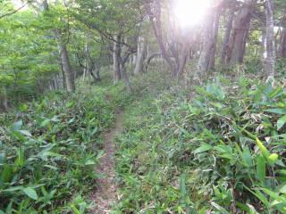 20120826_blog_20120731_Hokkaido_DSC02838_a.JPG