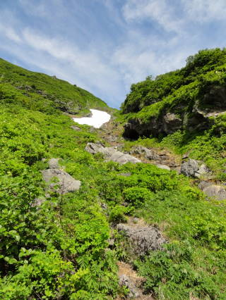 20120826_blog_20120731_Hokkaido_DSC02913_a.JPG