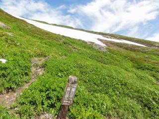 20120826_blog_20120731_Hokkaido_DSC02924_a.JPG