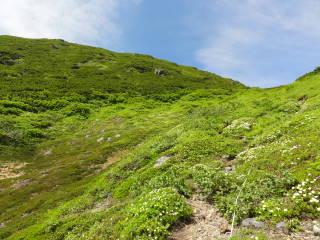 20120826_blog_20120731_Hokkaido_DSC02939_a.JPG