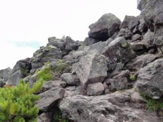 20120826_blog_20120731_Hokkaido_DSC02967_a.JPG