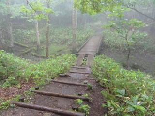 20120902_blog_20120801_Hokkaido_DSC03149_a.JPG