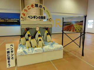 20120902_blog_20120801_Hokkaido_DSC03261_a.JPG