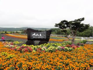 20120923_blog_20120802_Hokkaido_DSC03276_a.JPG