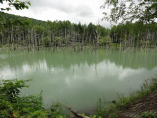 20120923_blog_20120802_Hokkaido_DSC03468_a.JPG